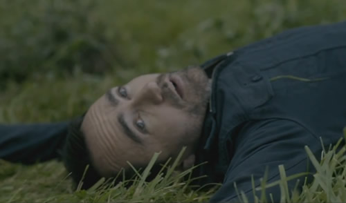 Video: The Shins - It's Only Life